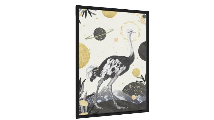 Quadro Ostrich planet - Galeria9, por Larissa Grace