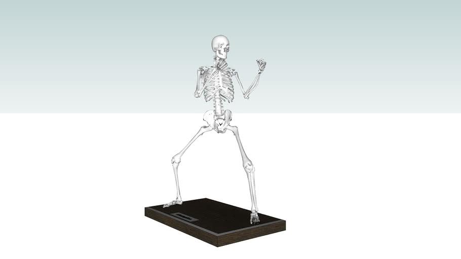 esqueleto.