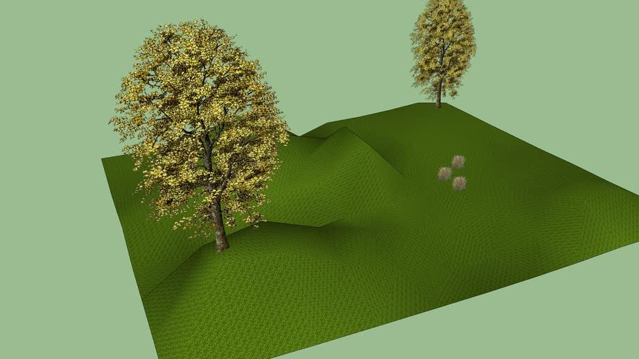 Landscape 5001