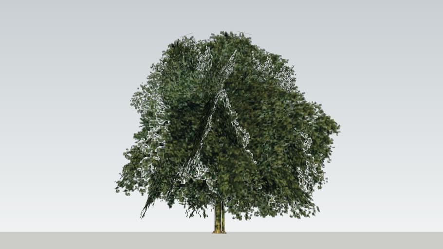 Tree version 2