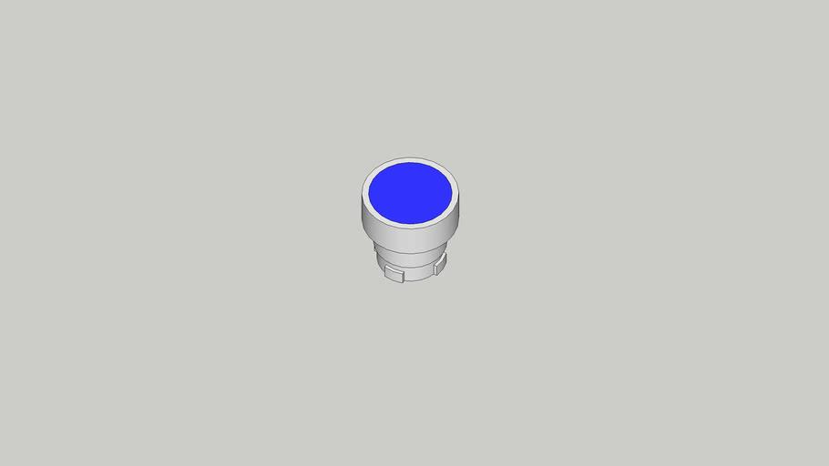 Tête bouton bleu