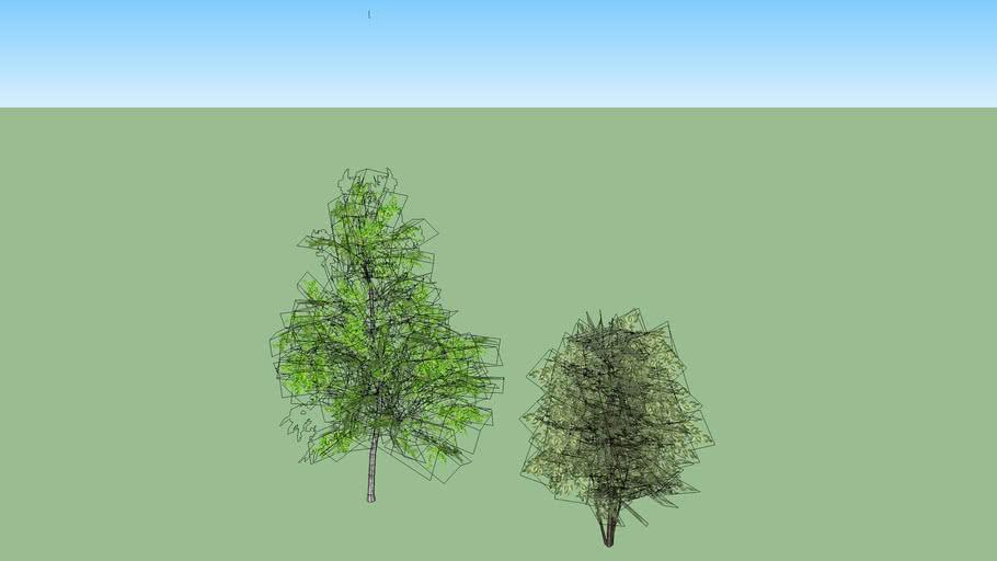 Потанинская 3 + деревья