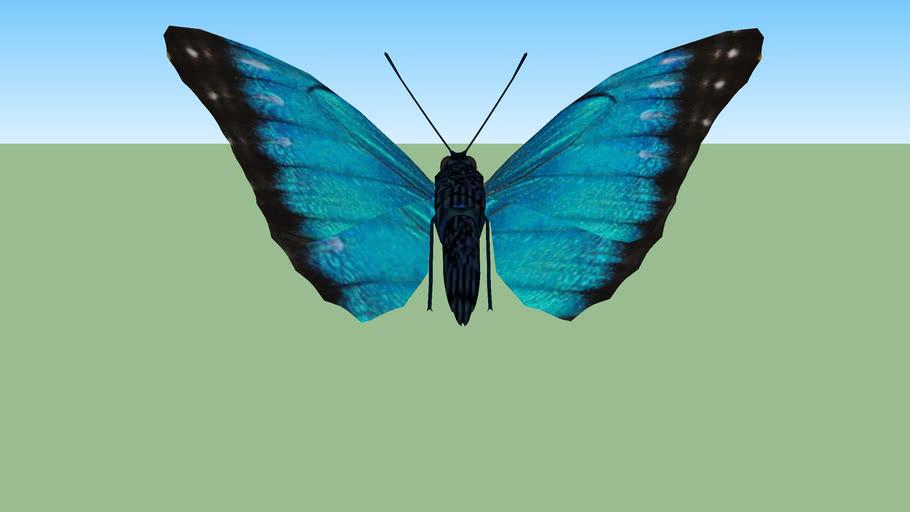 papillon 3 - butterfly 3