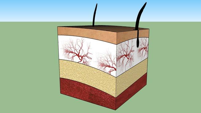Allenby Dermatology - Enjoy Beautiful Skin