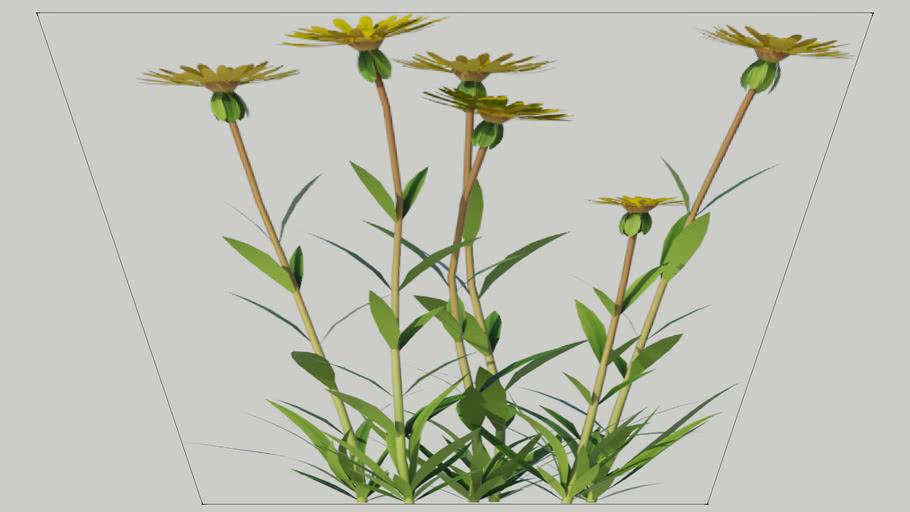 V-Ray proxy - Flower