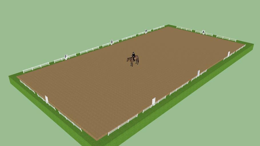 3D horse dressage riding place