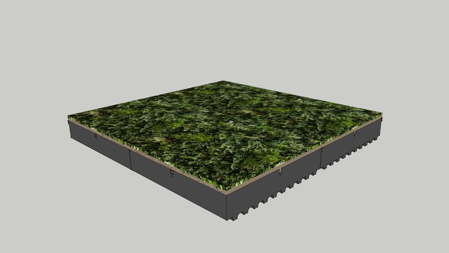 Green Roof Tray System: Planted-in-Place