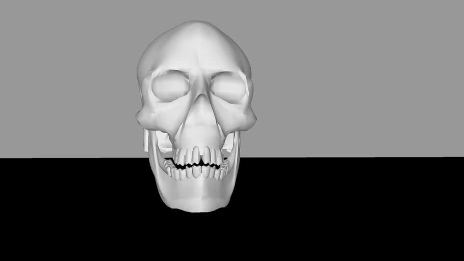 Skull Room Void