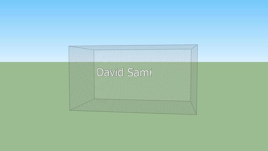 David Sami