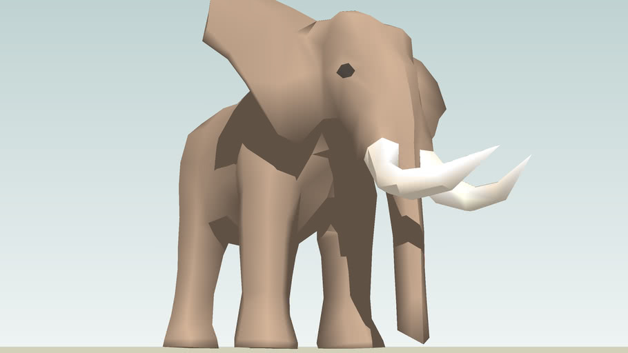 African Elephant (adult male) color