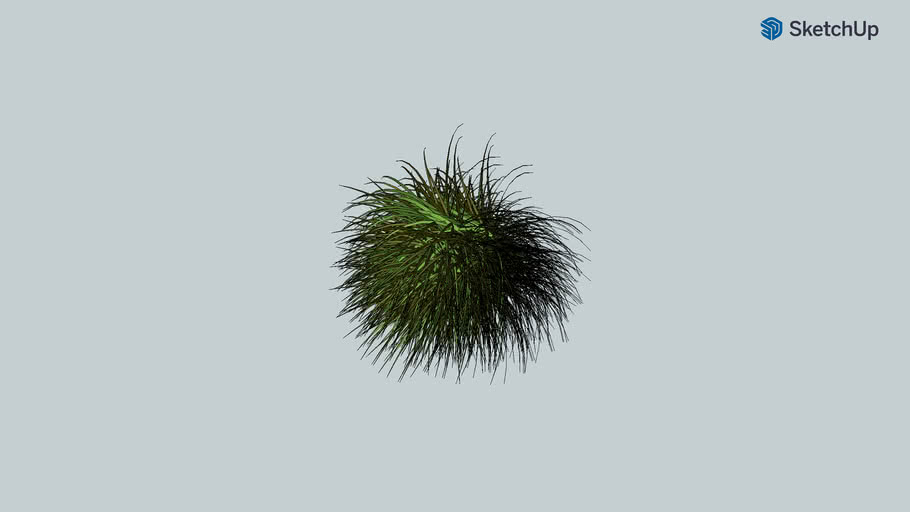 Copy of 3D plante à plumeaux, gynerium, arbre, tree, jardin, plante(frederic tabary)