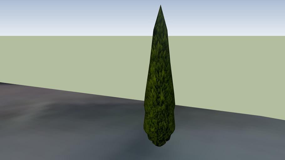 ağaç 1