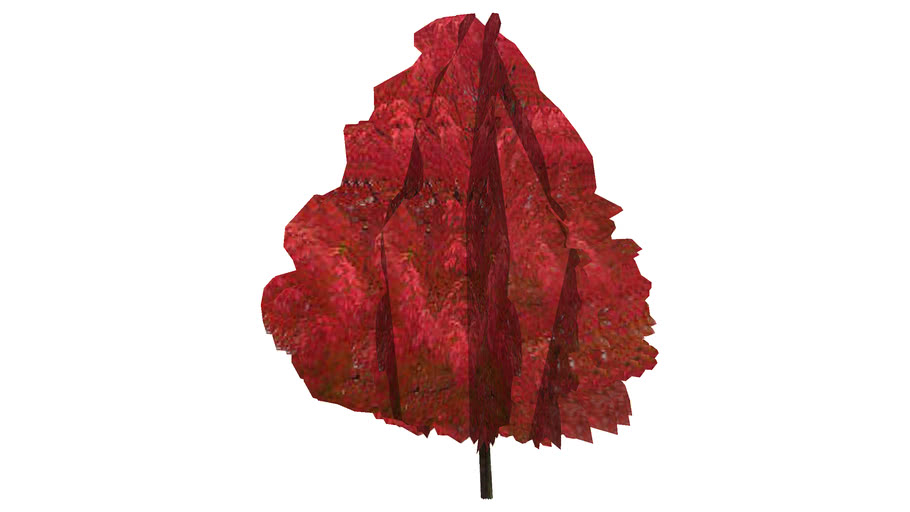 Low Poly October Glory Red Maple