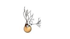 G.03-植物(擺飾)