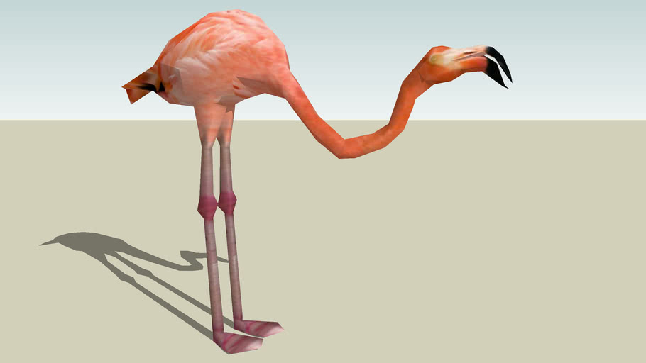 Greater Flamingo Photo Textured