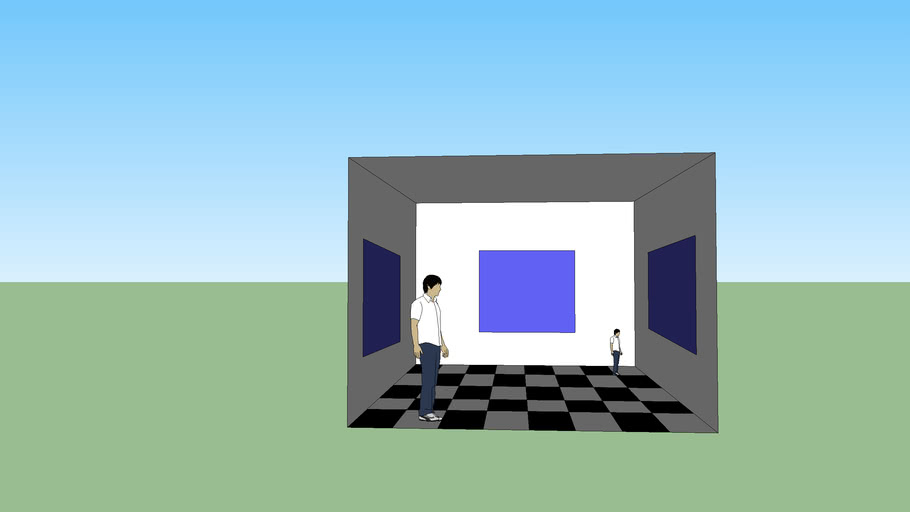 Another room illusion