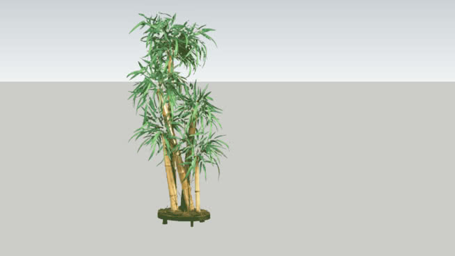 Chinese decorative Bamboo