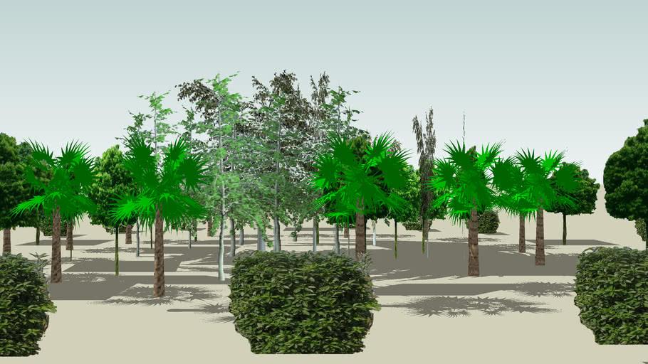 赣州市东延段路口环岛绿化带