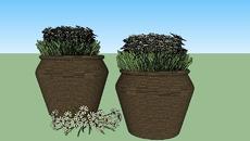 Vegetação, Vasos e Jardins