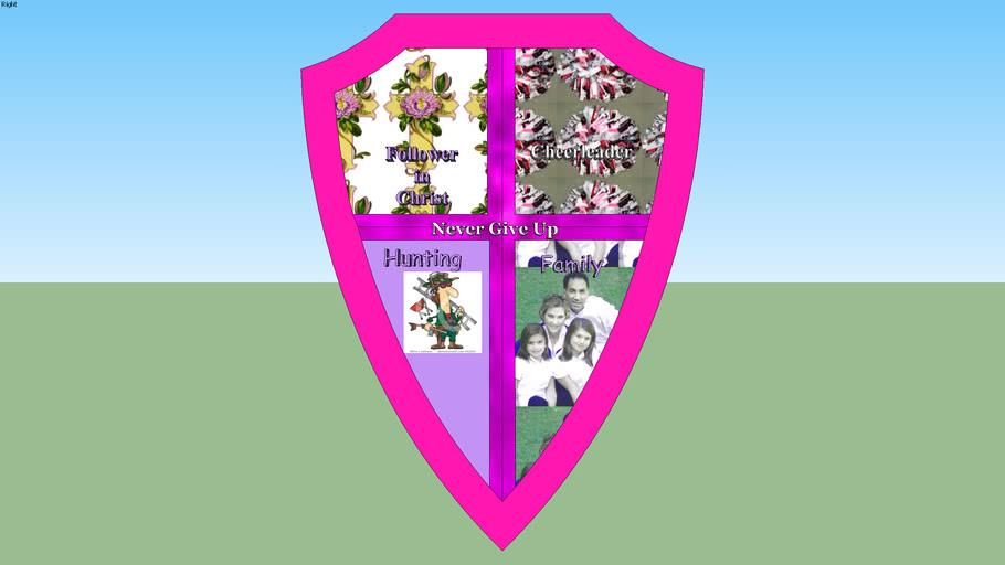 gses-2012la6-4-shield-christinas