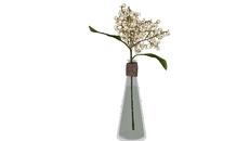 Vases / Flowers
