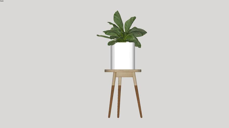 Planta 02