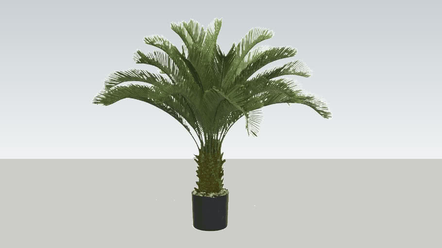 Low poly, Potted Palm Tree