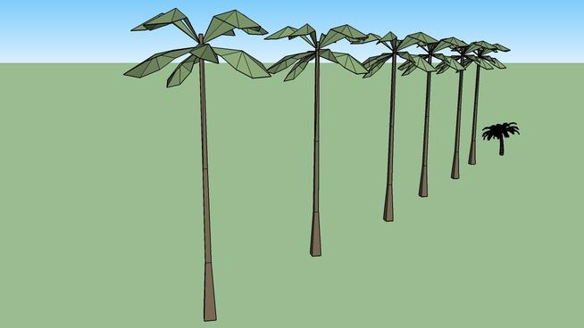 Venetian Palm Trees Las Vegas