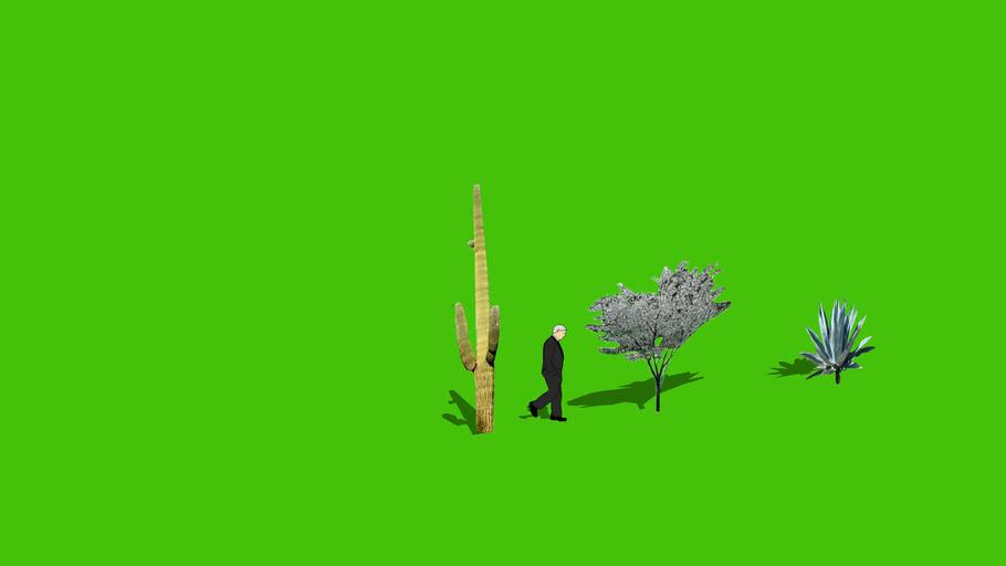3-D Warehouse Plants