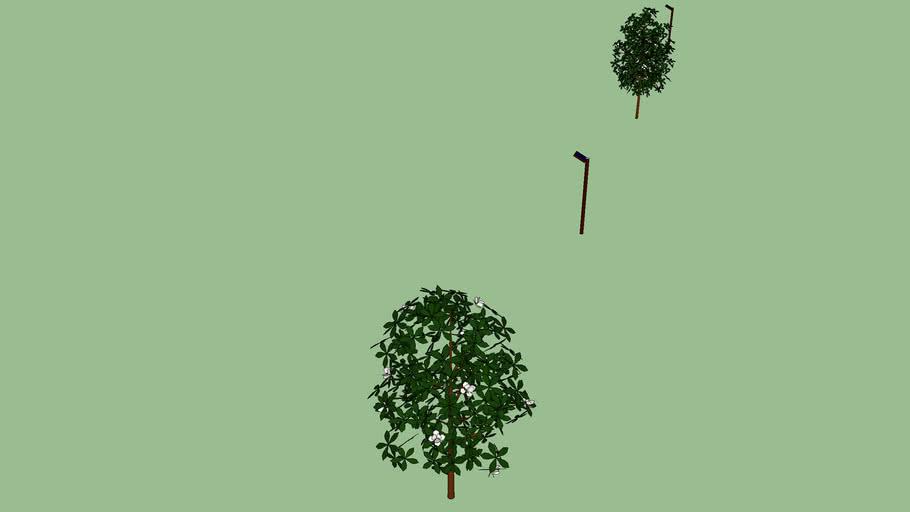 景観用植樹等0002