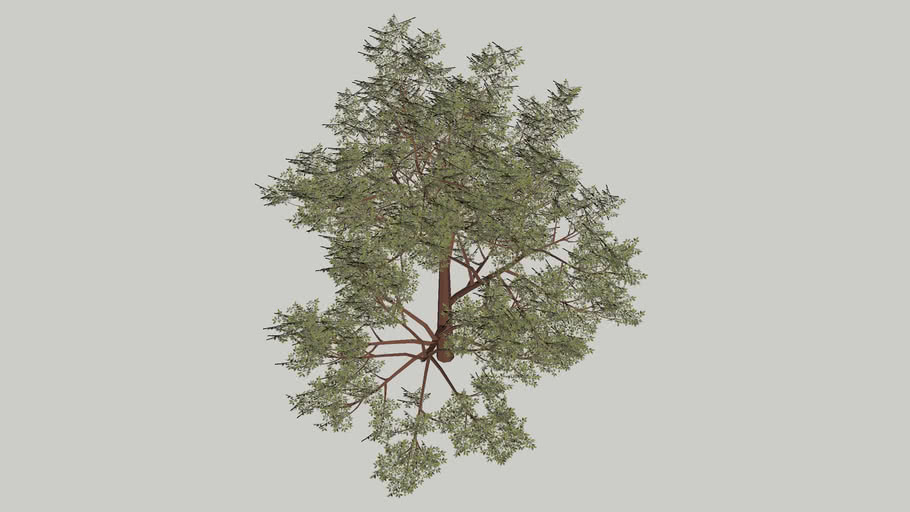 Large tree very detailed (low poly version)