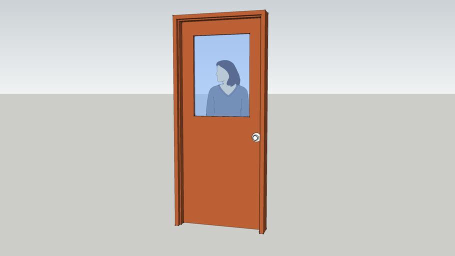 Flush Door with glass insert