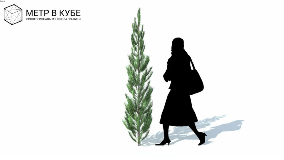 Low poly 3d tree pine bush (046)