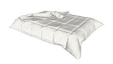 furniture / bed