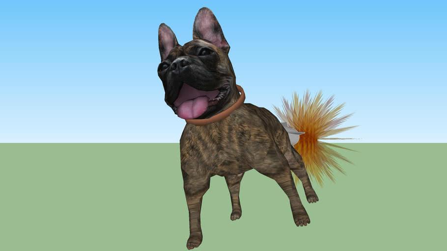 ROCKET DOG!!!!