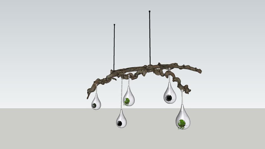 Branch with hanging plants