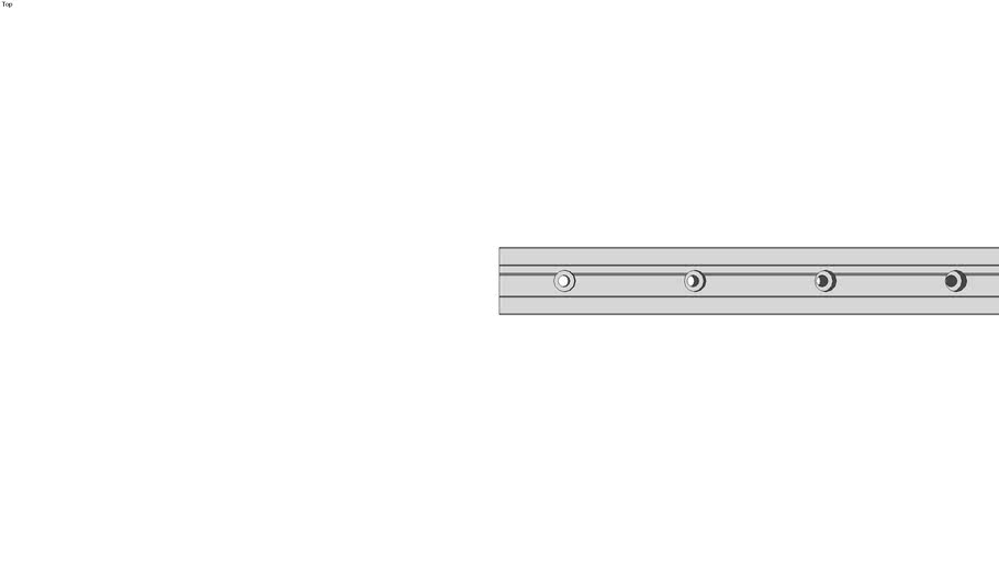 Guide Rails DryLin� T