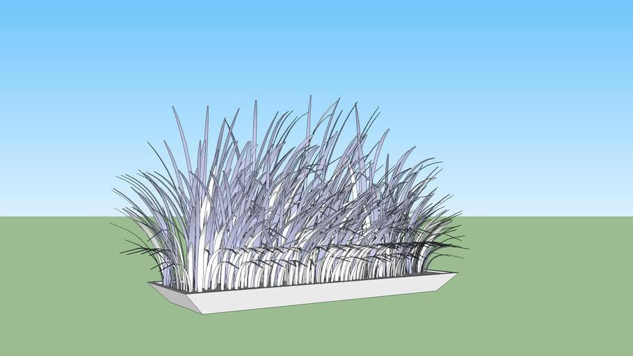 Planta exterior - lino