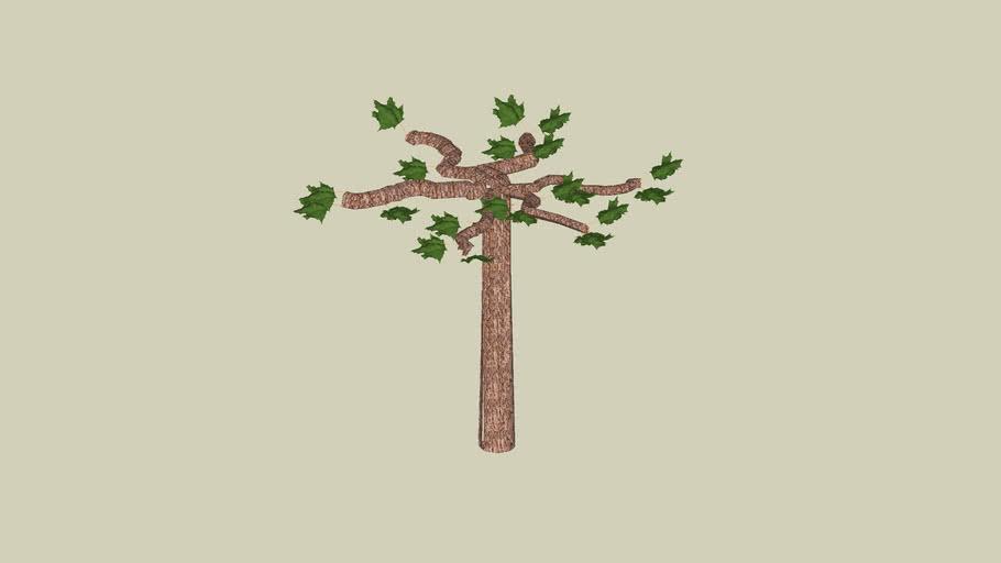 tree roof-shape