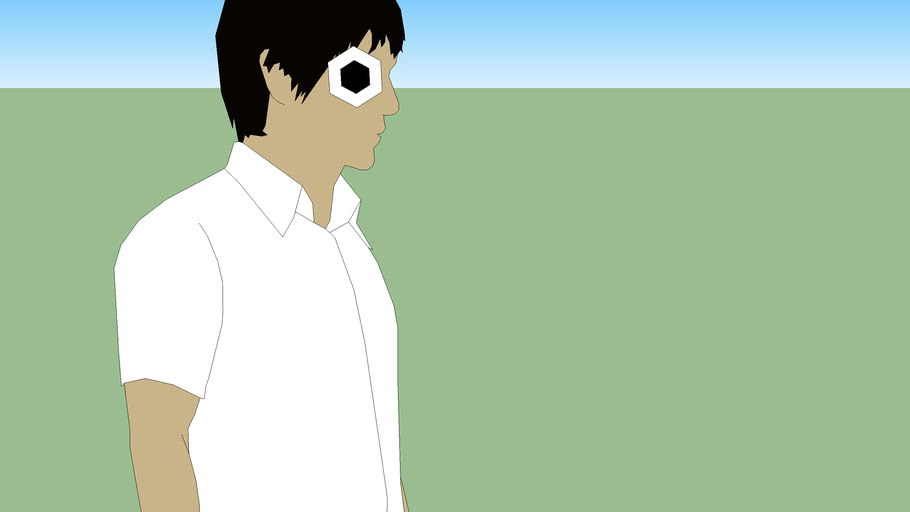 sangs pollygon eye