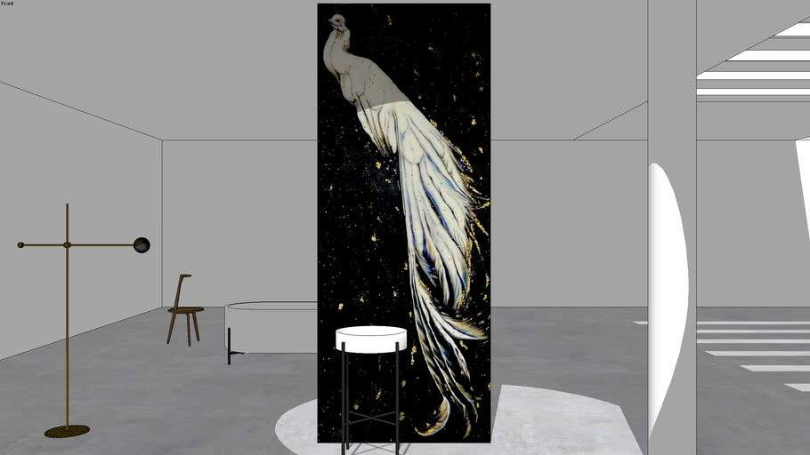 Peacock in space