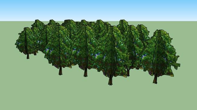 Drzewa Kortowo 130