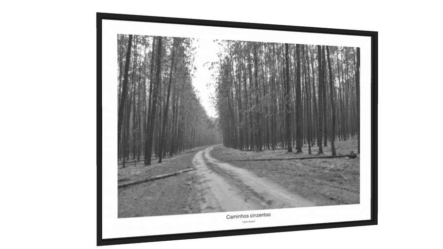 Quadro Caminhos cinzentos - Galeria9, por Decourt