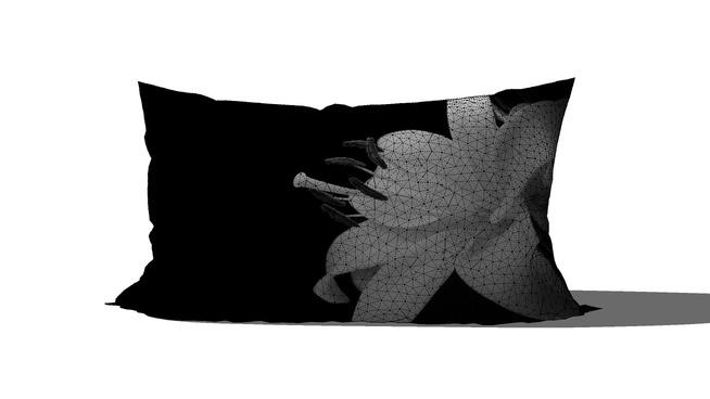Black_White_Pillow