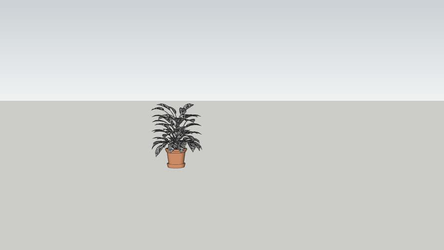 Växt i kruka, stor