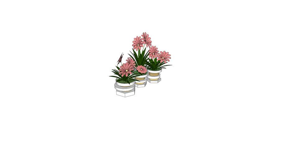 Flores con macetero blanco y oro