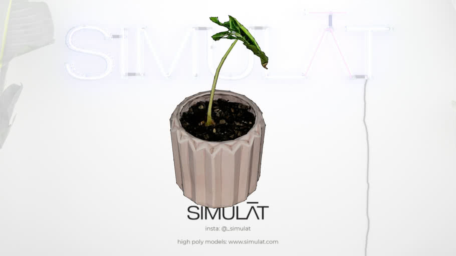 Simulat 3d scans: Pink Tesselated Pot Plant / Vase with Sprout