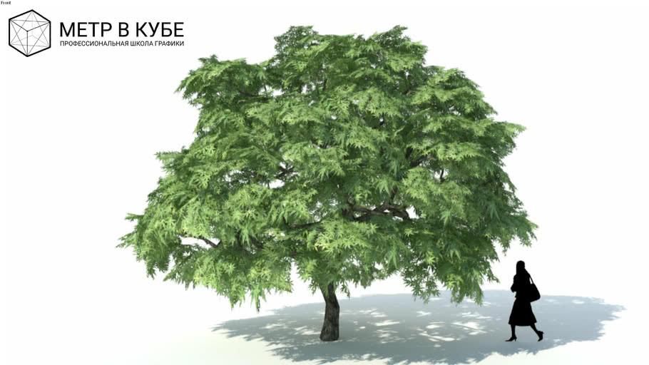 Low poly 3d tree (058)