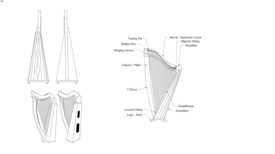Irish Harp Anatomy