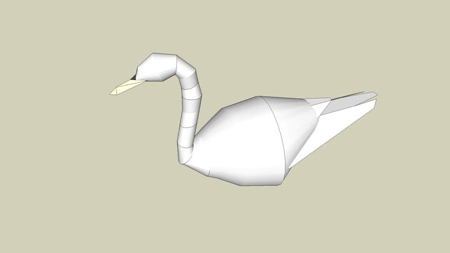 Swan of  the pond